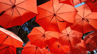 Red Parasol Sunshade