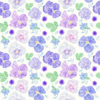 Seamless floral pattern with blue  viola flowers