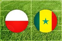 Poland vs Senegal football match