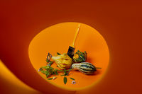 creative autumn composition with different decorative pumpkins