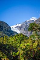 Franz Josef glacier and rain forest, New Zealand