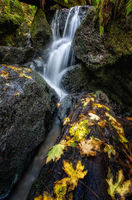 A Small Waterfall in the Mountains of California