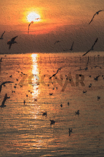 Flock of Seagull Silhouetted against  Sunset