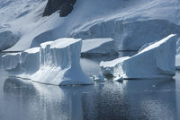 icebergs in the strait between the islands off the west coast of the Antarctic Peninsula