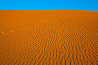 The small waves of orange sand
