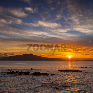 Rangitoto Auckland New Zealand