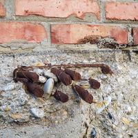Eisen Armierung ragt aus der Wand