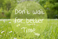 Gras Meadow, Daisy Flowers, Quote Dont Wait For Better Time