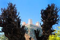Beni Mellal Château de Ain Asserdoun - Marokko.jpg
