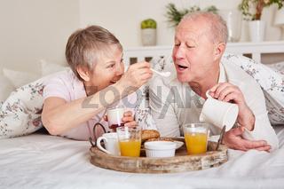 Glückliches Senioren Paar frühstückt im Bett