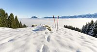 Pair of hiking sticks in snow. Sporting activity in mountains winter landscape. Allgau, Bavaria, Germany.
