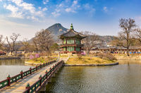 Spring at Gyeongbokgung Palace, Seoul, South Korea