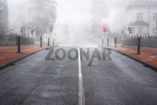 Boulevard in Slovenia surrounded by mist