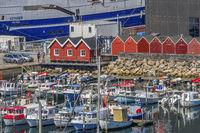 The Harbour In Skagen Denmark