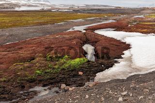 Colored land in Ny Alesund, Svalbard islands