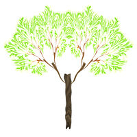 a fractal tree isolated on white