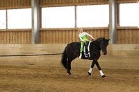 Mädchen voltigiert auf dunklem Pferd