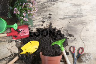 Gardening tools and flower pot