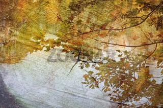 Herbstliche Impression mit Holz Textur