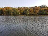 Die Insel Großer Werder im Liepnitzsee im Herbst