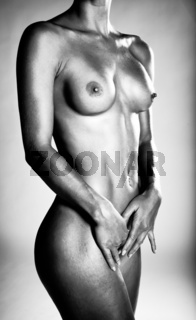 Image Of A Beautiful Nude Woman In Monochrome Standing