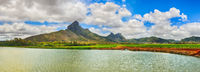 Beautiful landscape. View of a sugarcane and mountains. Mauritius. Panorama