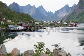 Reine auf den Lofoten, Nord-Norwegen
