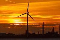Holländische Küste im Sonnenuntergang