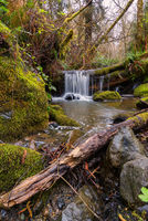 Small Waterfall in the Mountains of Northern California