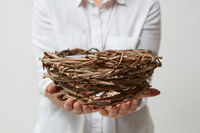Nest in the hands of a girl in a white shirt on a light background