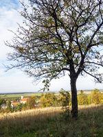 blick auf Klostermarienberg im Burgenland