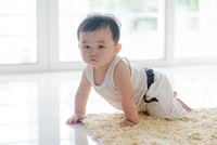 Healthy baby boy crawling on carpet.