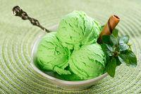 Mint ice cream ready to serve