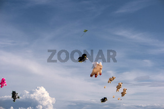 Colorful Kites in the Air