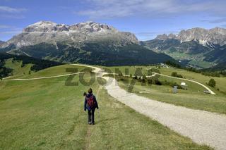 Sellagruppe und Puezgruppe in den Dolomiten; Suedtirol; Italien;