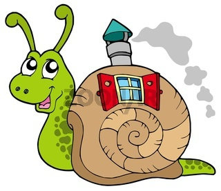 Snail with shell house - isolated illustration.
