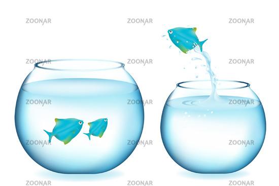 Jumping Blue Fish