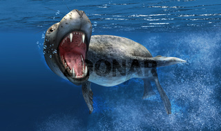 Leopard seal under water with close up on head and open mouth.