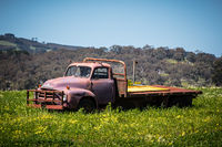 Abandoned Ute in a Field
