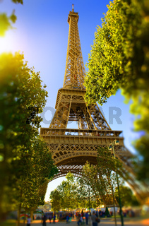 Eiffel Tower in the park