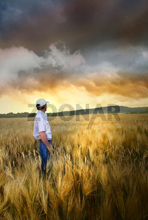 Man standing in a field of wheat