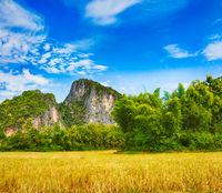 Beautiful rural landscape. Luang Prabang. Laos.