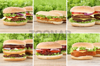 Hamburger Sammlung Collage Cheeseburger Käse Tomaten