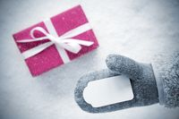 Rose Gift, Glove, Copy Space, Snowflakes