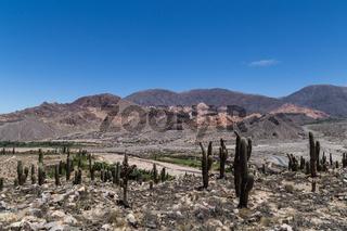 View from Pucara de Tilcara