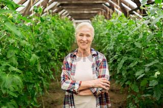 happy senior woman at farm greenhouse