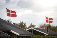 Danish flag celebration