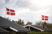 Danish flag celebration