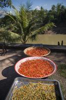 LAOS LUANG PRABANG NAM KHAN RIVER FOOD SPICES