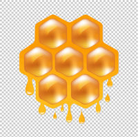 Honeycombs With Transparent Background